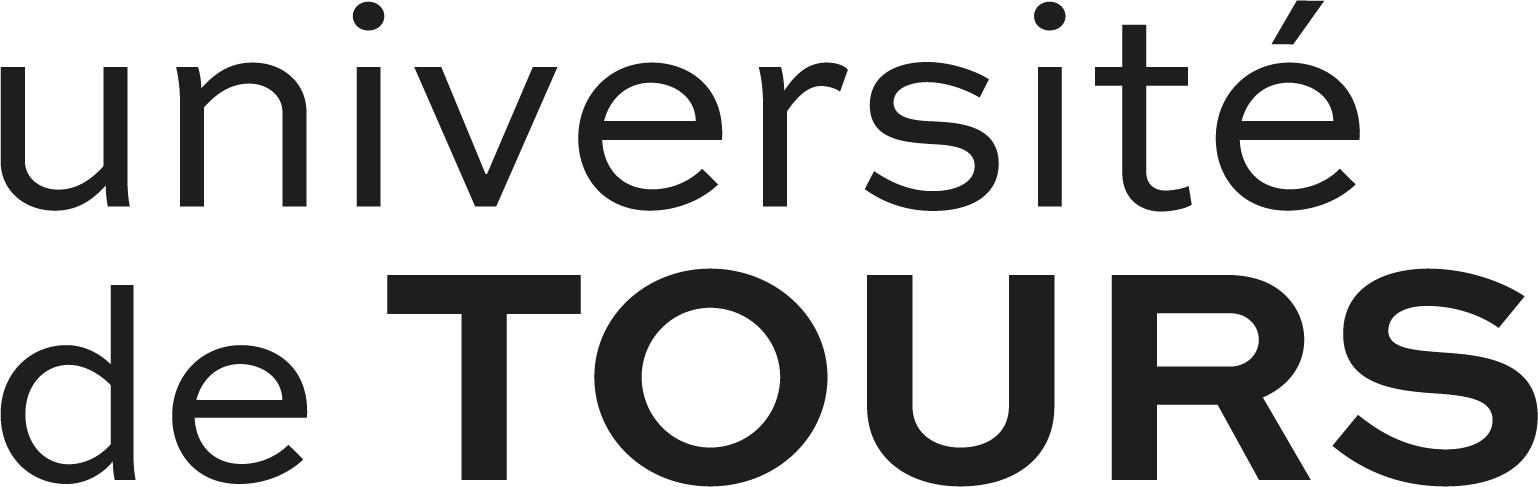 univTours_transitoire_logo_noir_1_.jpg